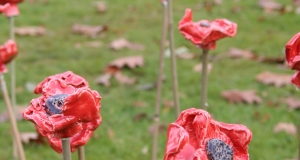 Lest we forget – Chichester's Oakwood School creates new War Memorial Garden and curriculum to mark 100-year Armistice anniversary