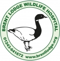 Brent Lodge Bird & Wildlife Trust Logo
